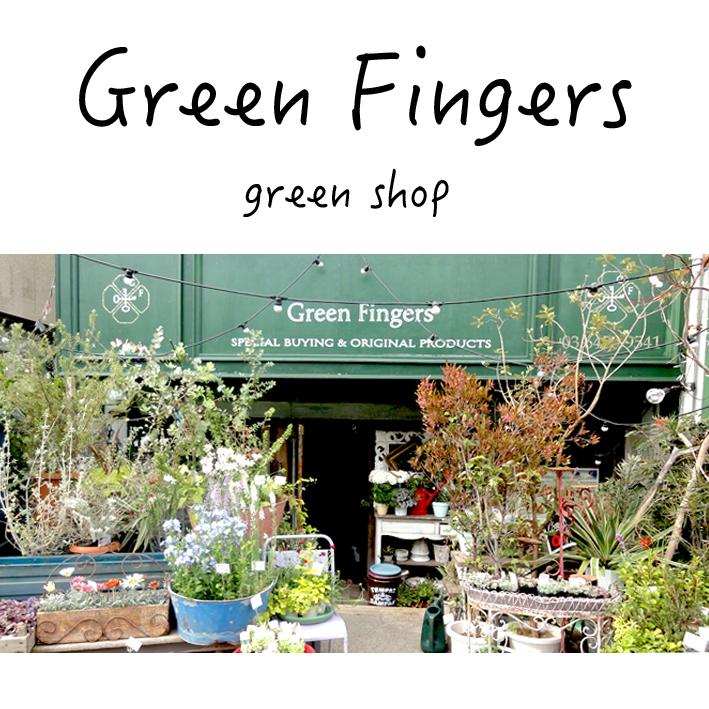 おしゃれなグリーンショップ、green fingers