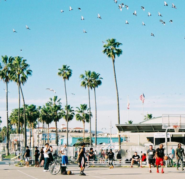 マッスルビーチ?スケーターカルチャー。LA行くならベニスビーチへ!