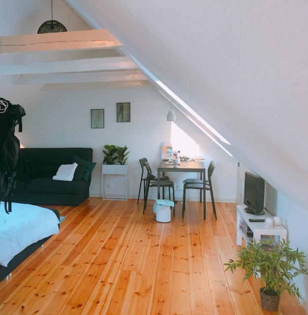 #Airbnb で#デンマーク #オーデンセ  に1ヶ月滞在してみた。