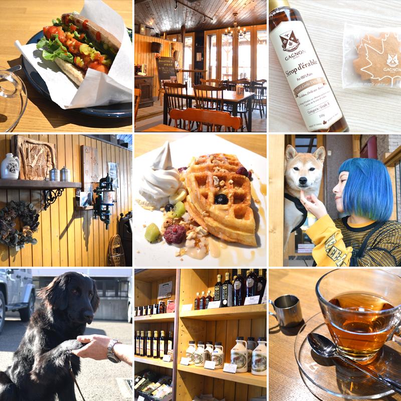 かわいい看板犬が迎えてくれるメープルシロップ専門カフェ #北海道ローカル