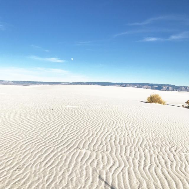 地球上に真っ白な砂漠が存在するのを知っている?アメリカ西部ロードトリップで出会ったWhiteSands #whitesands