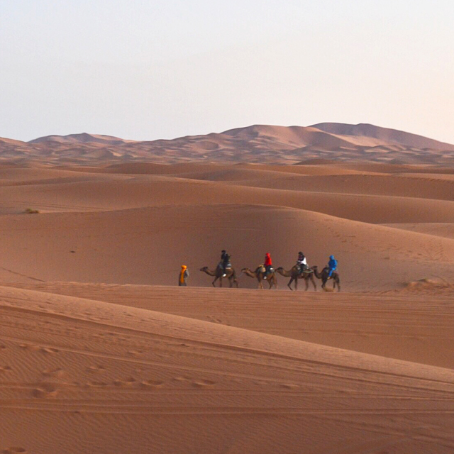 次の旅先は砂漠にしてみない?悩みを吹き飛ばし心を解放してくれる砂漠の旅。#デトックス旅