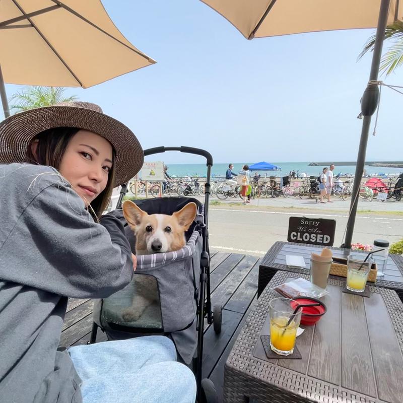 愛犬と一緒に入れるビーチ沿いカフェがたくさん!愛犬と一緒に湘南を旅するなら茅ヶ崎がおすすめ #湘南