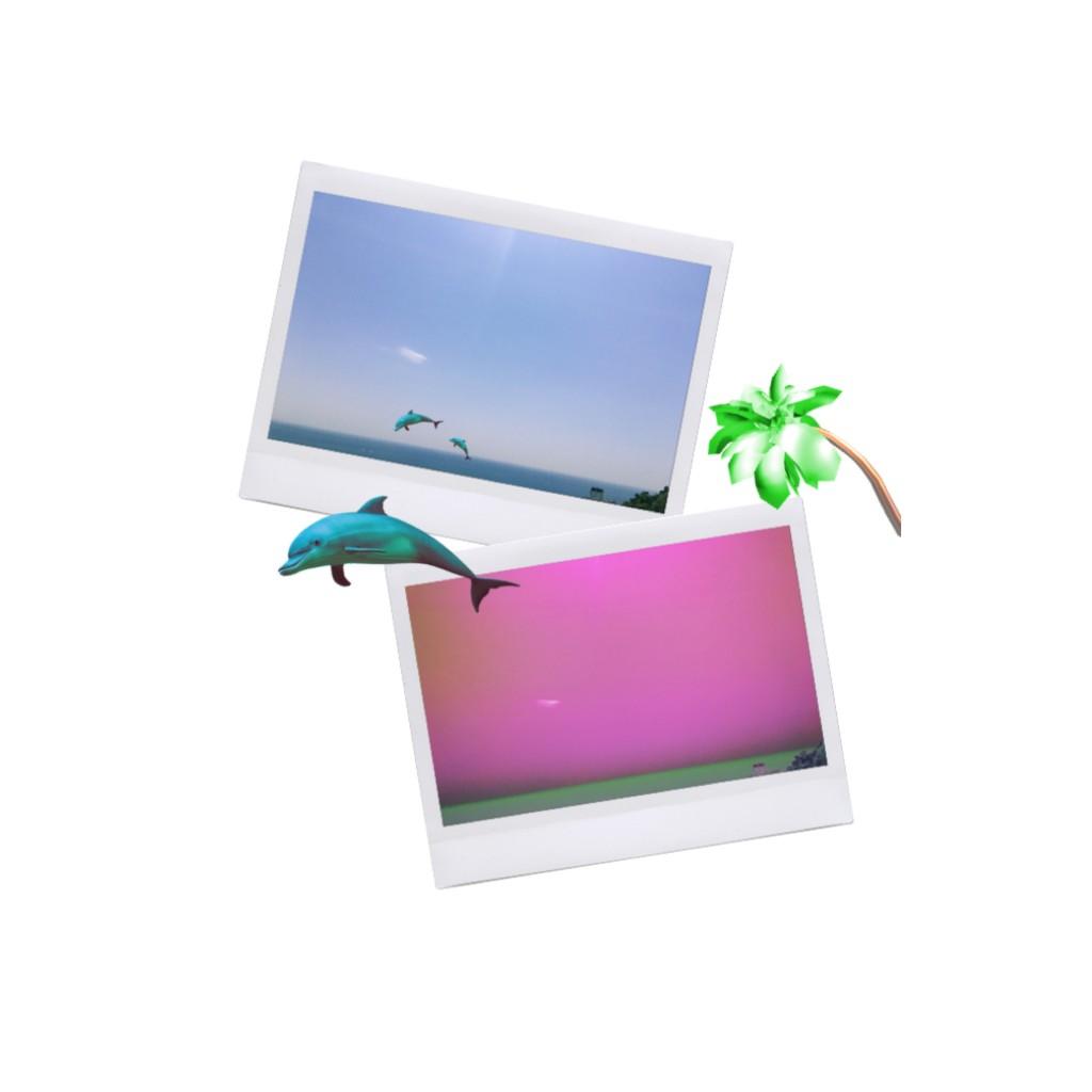 携帯で撮った写真を #POLAROID 風に変身させられる #APP の使い方&コツ♡ #EDIT #INSTAX