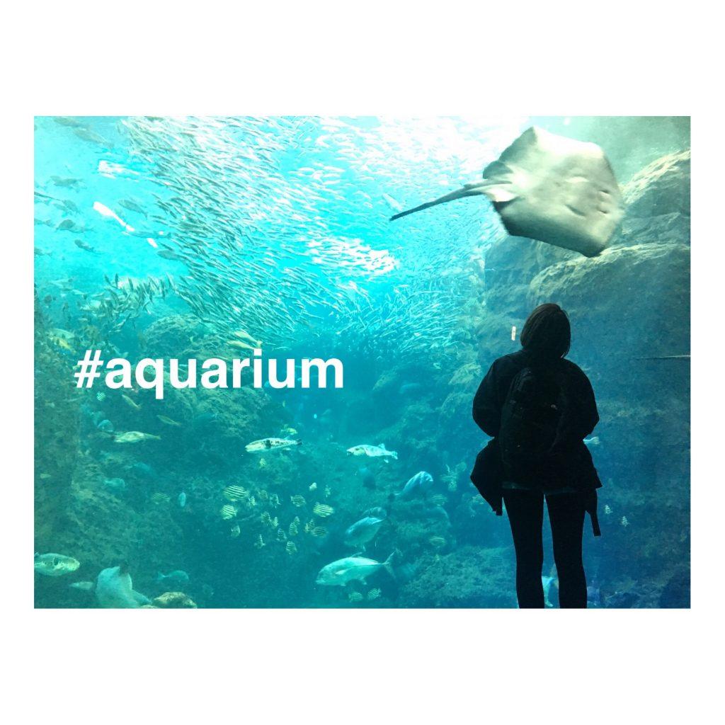 暑い夏にこそ #水族館 へ♡実はNYLONISTA必見の #INSPIRATIONAL なHOTスポットなのだ… #AQUARIUM