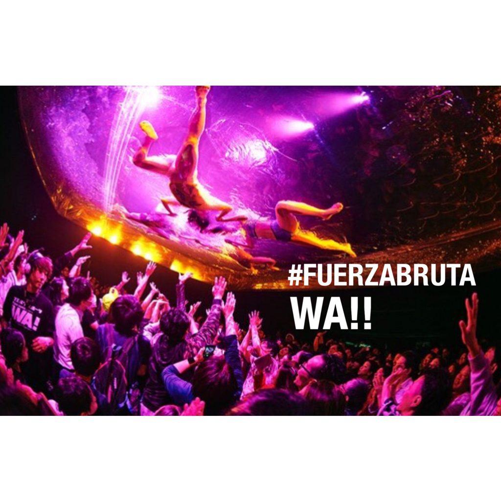 行かないで終わるのは本気でもったいない!「超」近距離体験型エンターテインメント #FUERZABRUTA WA!!