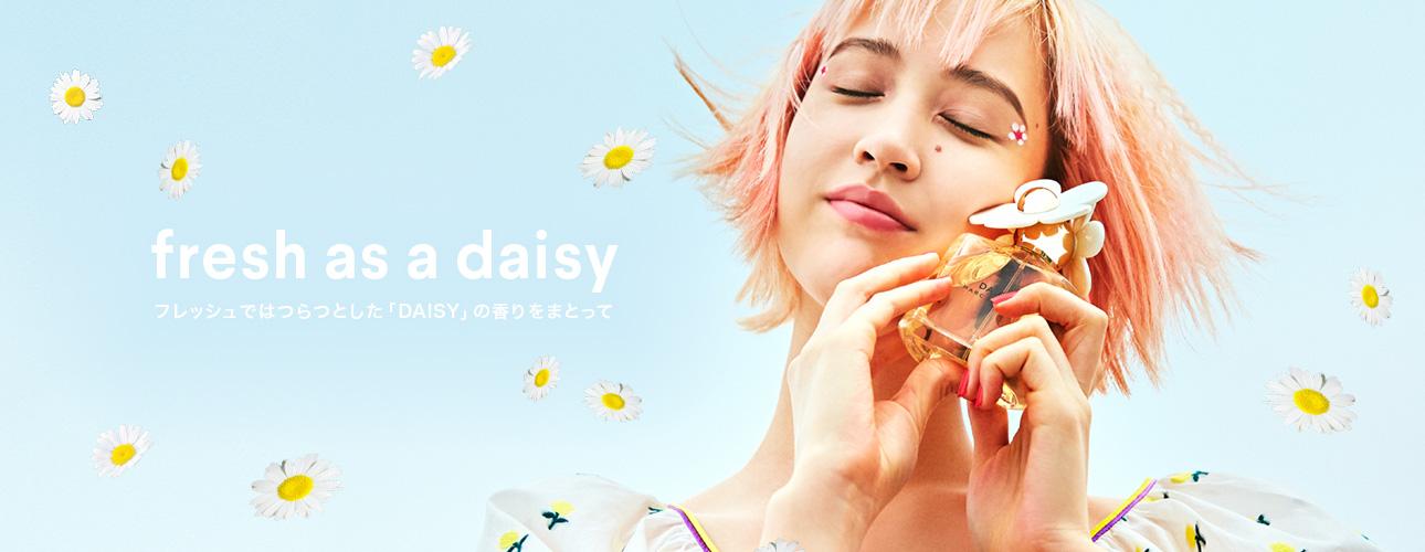 keyvisual_daisy