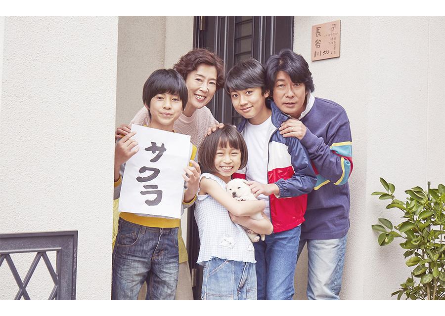 北村匠海×小松菜奈×吉沢亮が兄妹役で共演!『さくら』